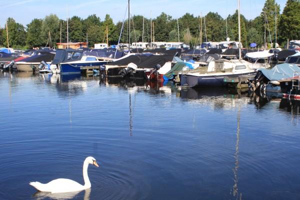 IMG_0496 Haven Vlietland
